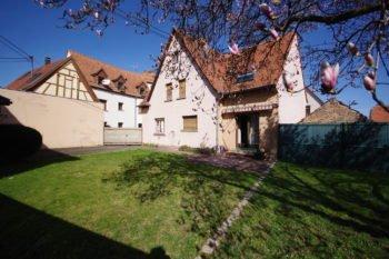Vue maison depuis jardin 2- 737 - Vendenheim