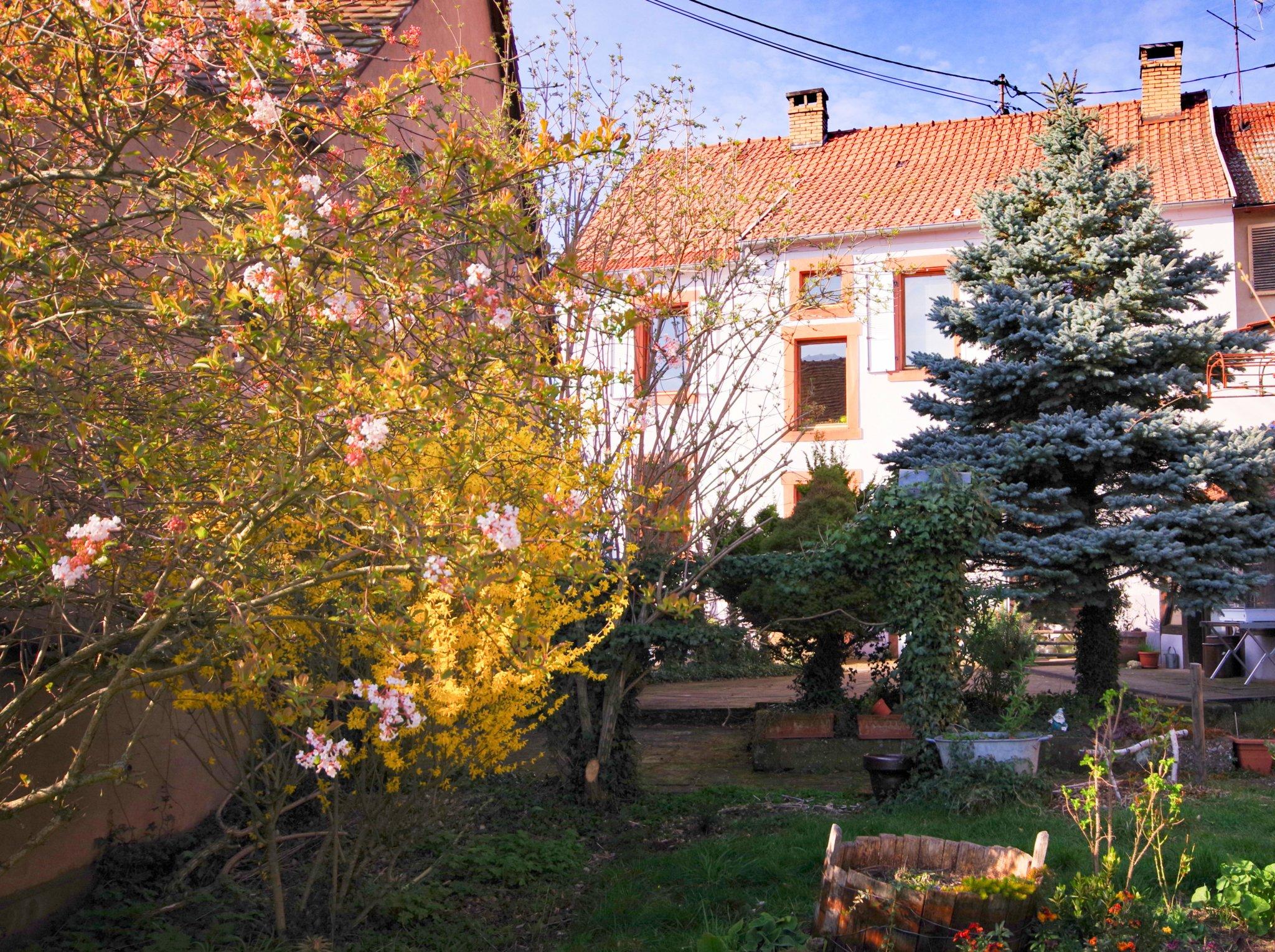 Vue Jardin et maison 2 - 738 - Ingwiller